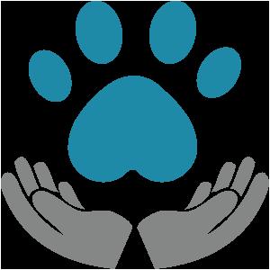 ganzheitliche behandlung tierarzt